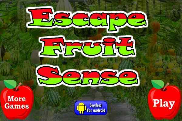 Play Escape Fruit Sense