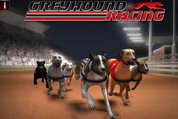 Play Greyhound Racing