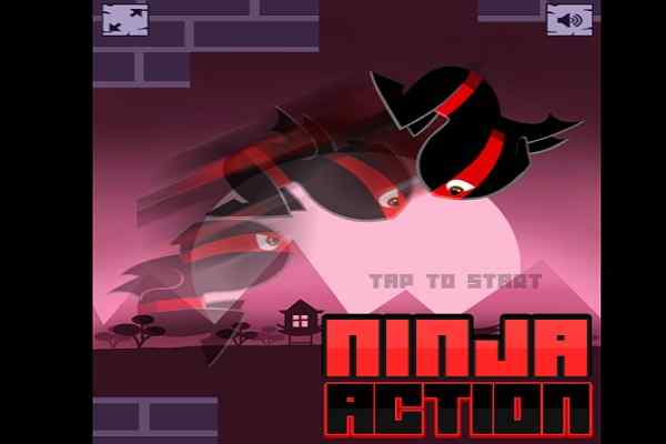 Play Ninja Action