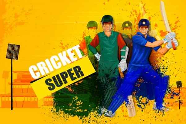 Cricket Umpire Decision, Cricket Games - Play Online Free