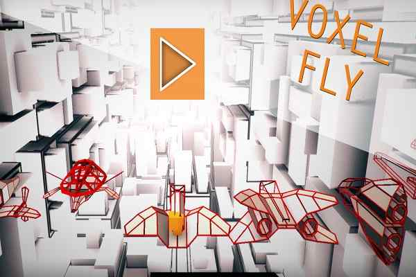 Play Voxel Fly