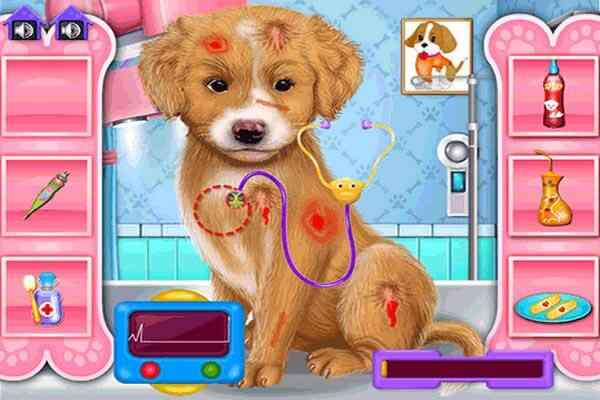 Play Fashion Pet Doctor