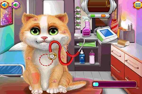 Play Kitty Sick Care And Grooming