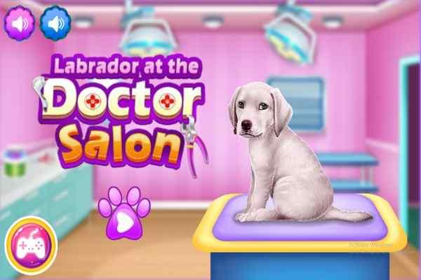Play Labrador at the Doctor Salon