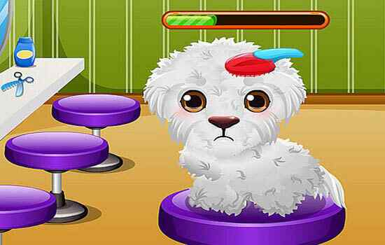 Play Stray Puppy Care