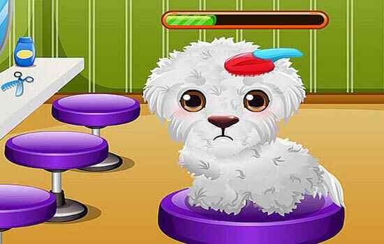 Play Stray Puppy Care